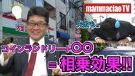 コンビニ併設型コインランドリーがトレンド!【マンマチャオTV】 #014